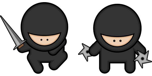 Contabilidad Ninja