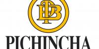 LOGO Banco-Pichincha
